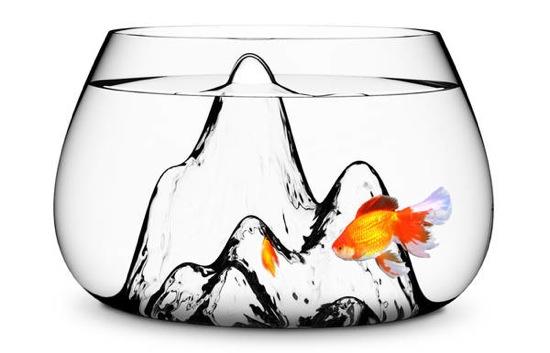 Fishscape fishbowl aruliden 2b